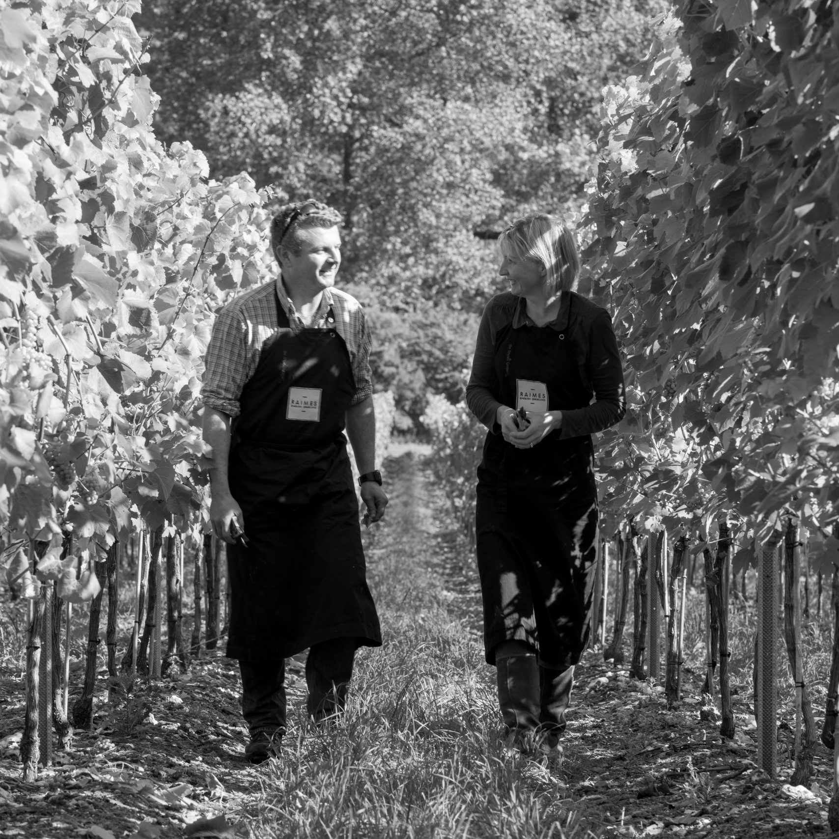 Growing good produce is in our soul. And the terroir of the South Downs is perfect for producing the finest English sparkling wine. Click on our site to read more.